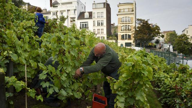 10 octobre 2018 : journée de la fête des vendanges à Montmartre